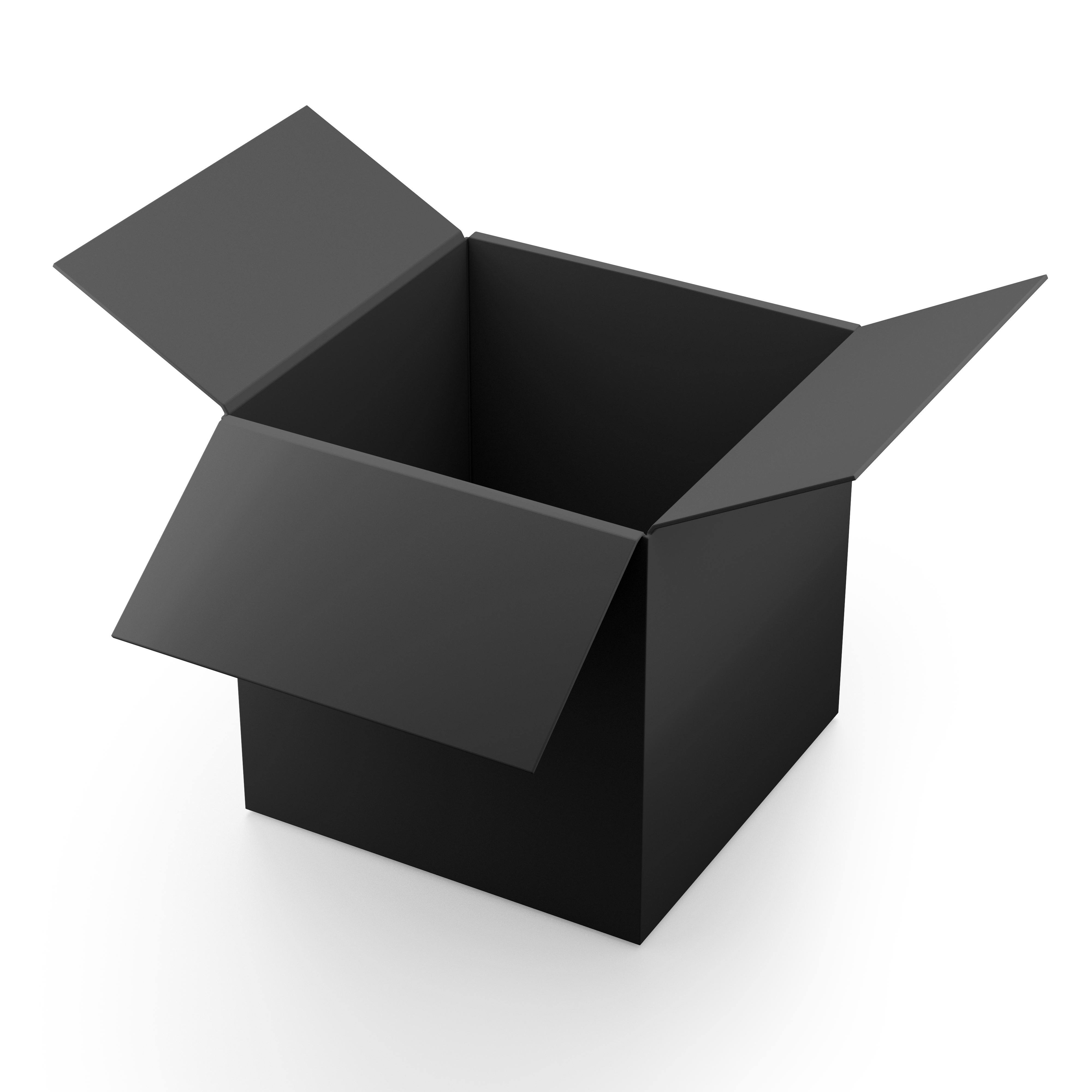 Interpretable Machine Learning: A Guide for Making Black Box Models Explainable