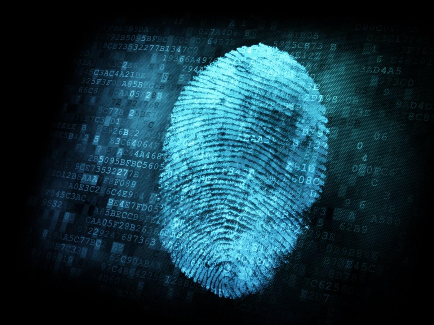 DeepMarks: A Digital Fingerprinting Framework for Deep Neural Networks